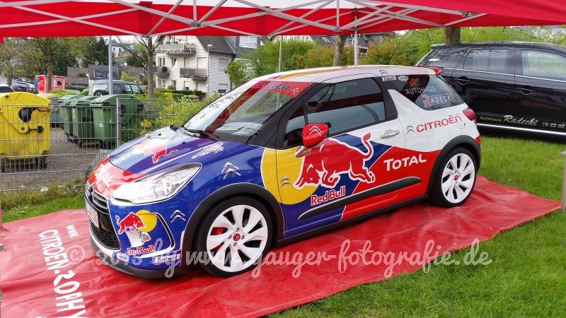 RGO_Rallye2015-012.JPG