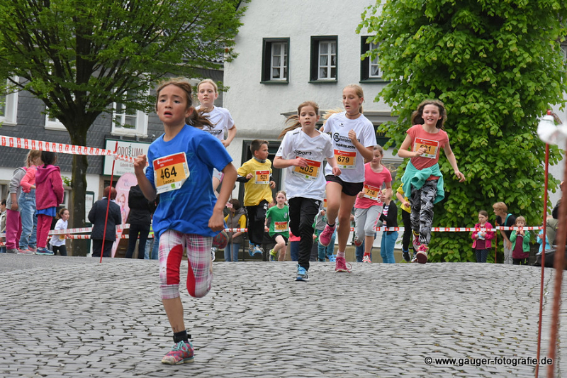 2016-5-20lindlarlaeuft15